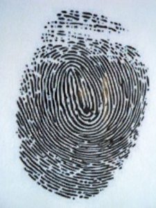 Computer Forensics Jobs: Is it really that difficult to enter the field?