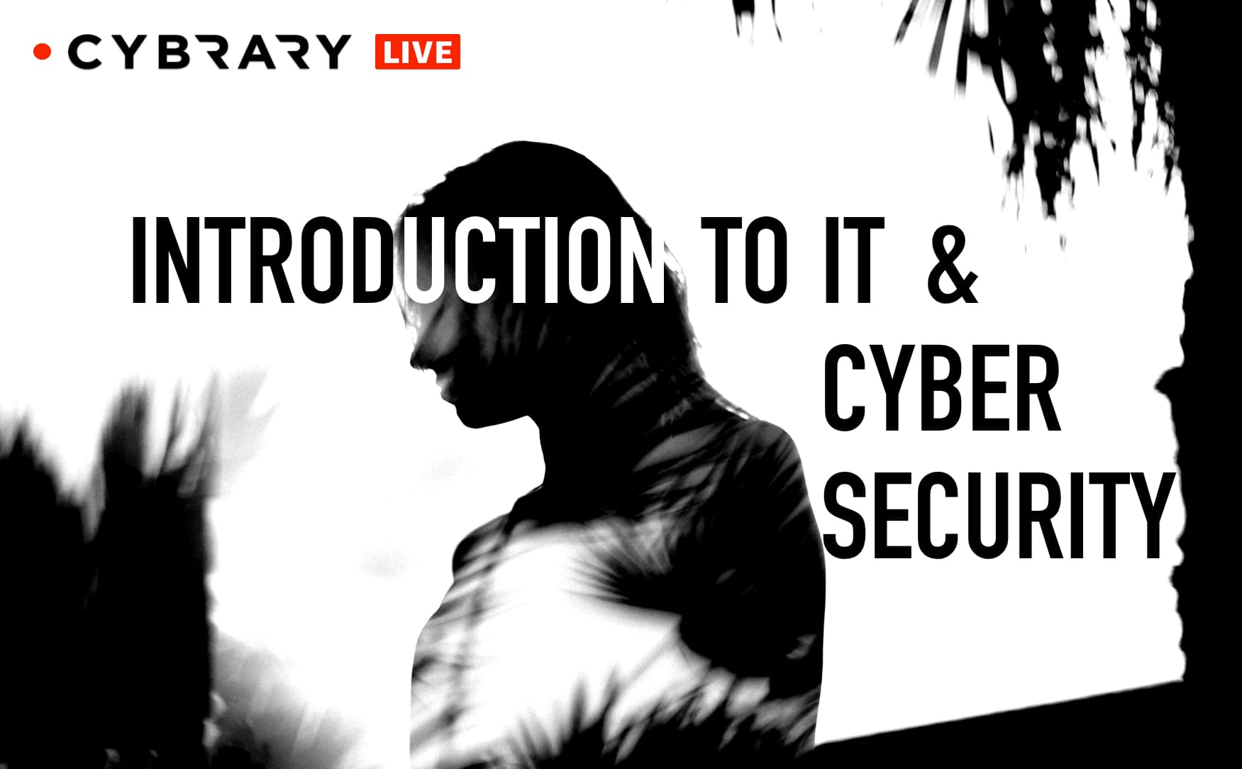 Introduction to IT and Cybersecurity