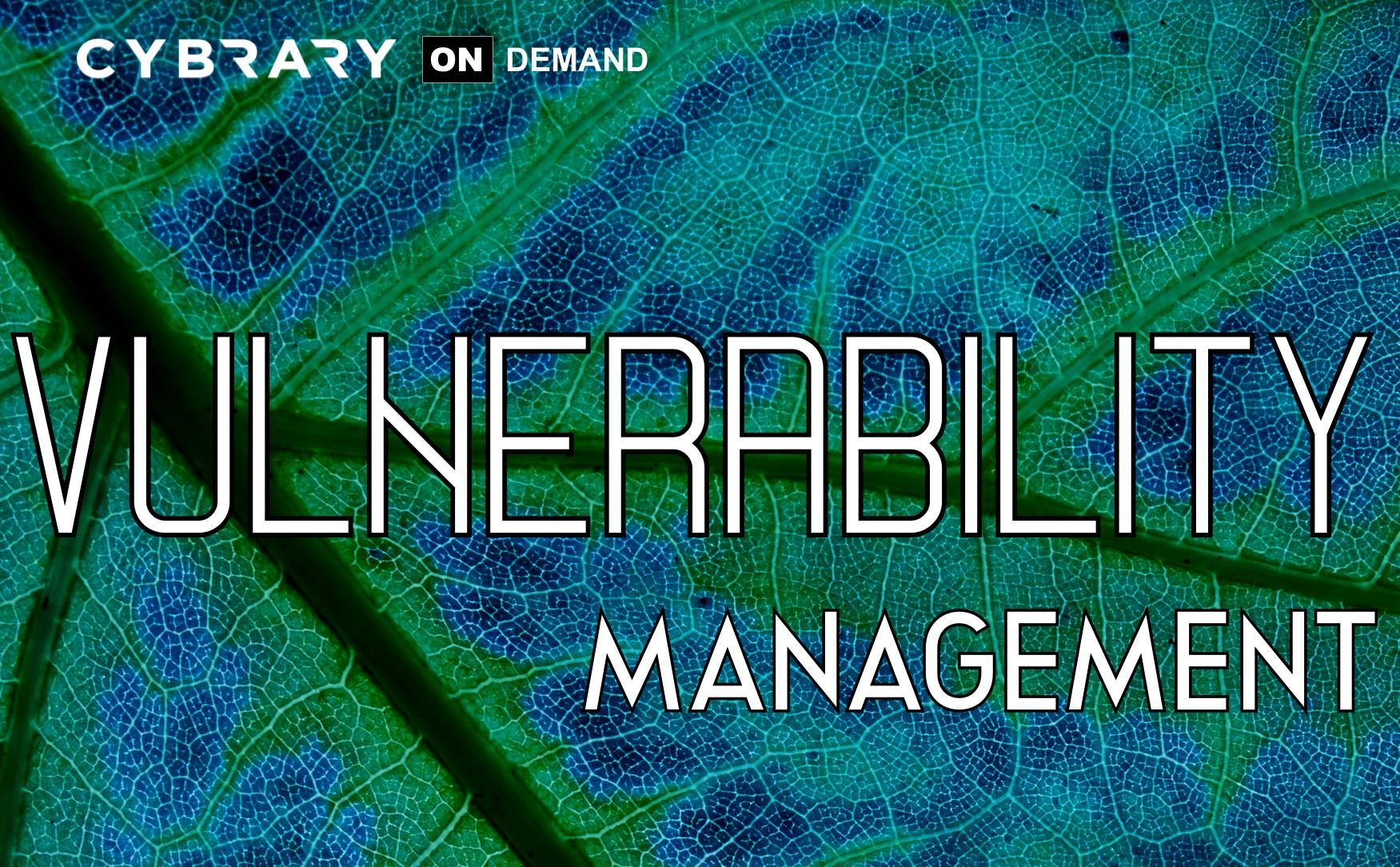 Fundamentals of Vulnerability Management