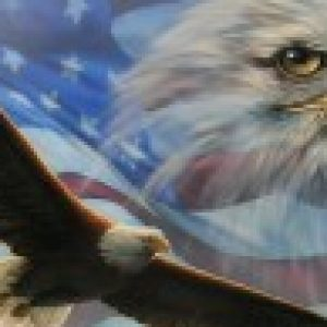 THE CYBER EAGLE (CYBER SECURITY + NETWORK SPECIALIST)s profile image